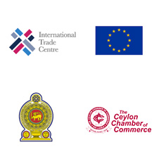 Expert Coaching Assistance for Export SMEs